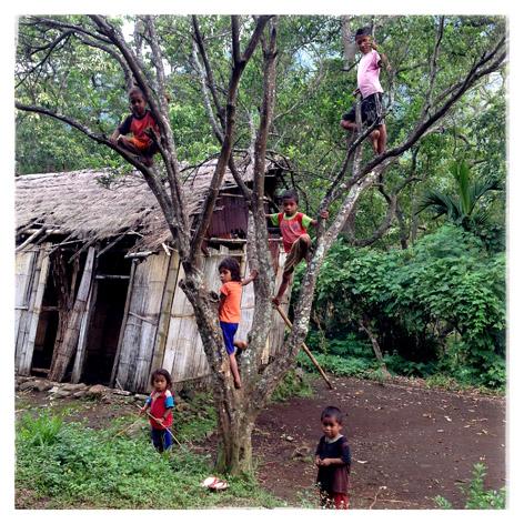 Anak-anak Kampung Roga, Kabupaten Ende, Nusa Tenggara Timur, bermain di pohon. Kampung Roga hingga kini belum mendapat aliran listrik karena lokasinya yang terpencil.
