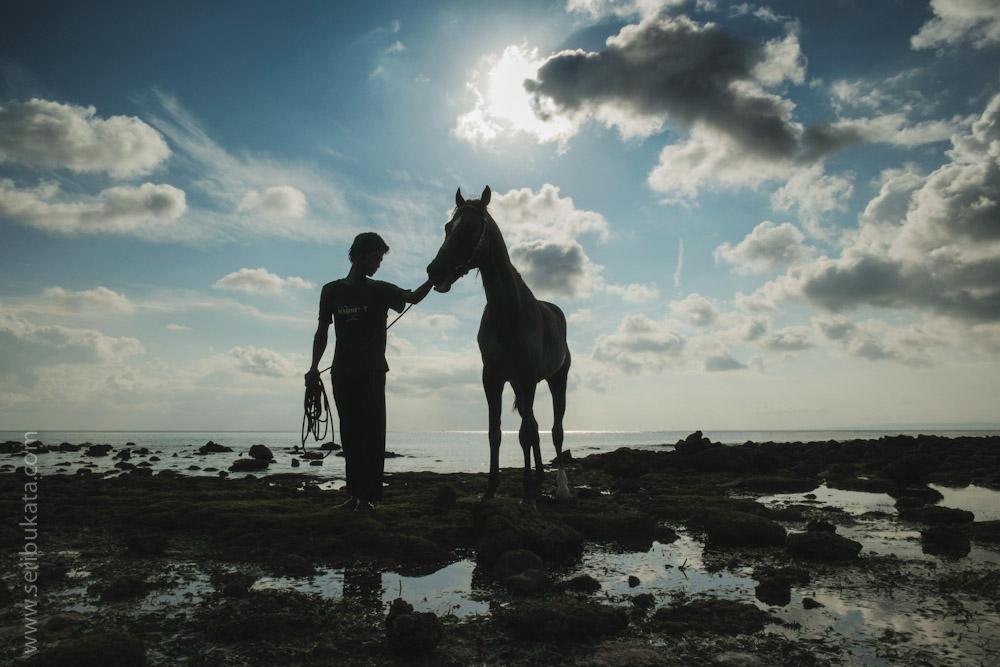 Mone membawa kudanya 'Robinhood' untuk mandi di laut.
